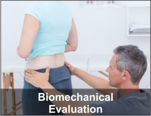 Biomechanical Evaluations